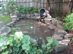 Backyard pond on Garden Tour