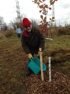 Pinchin Farm Native Tree Planting Nov 1 2014